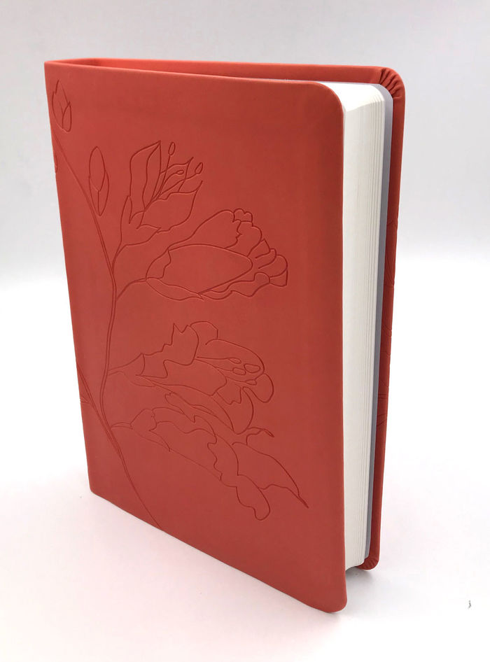 Biblia Holman Personalizada Naranja >