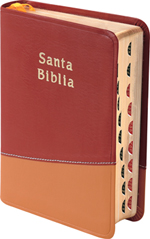 Biblia RVR045CTI Bicolor rojo/Mostaza