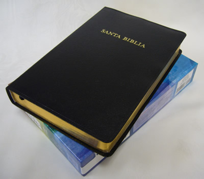 Biblia Arco Iris Cuero