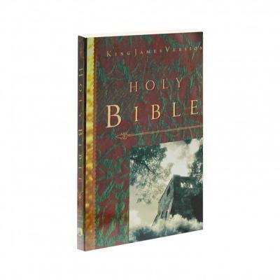 Biblia Ingles KJV