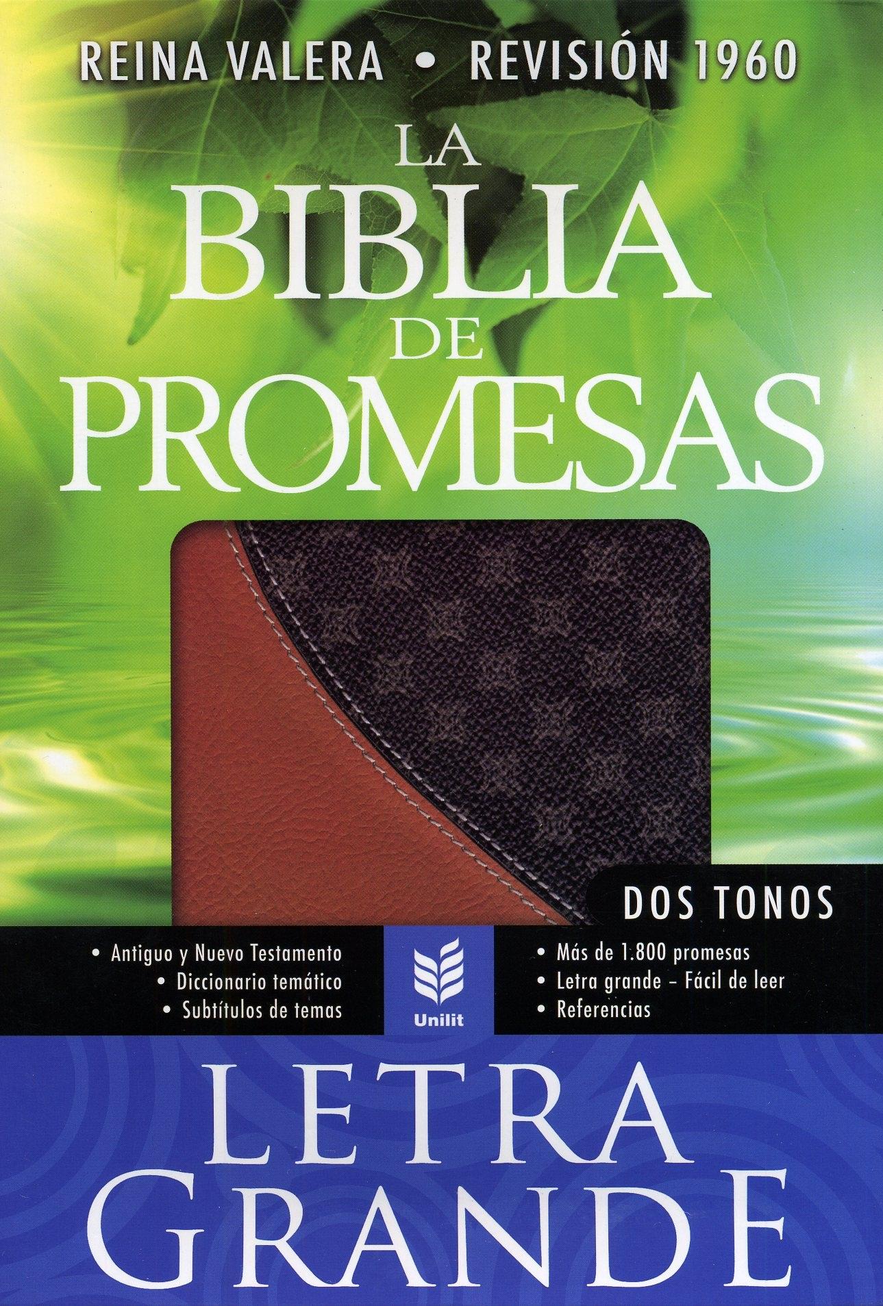 Biblia de Promesas Letra Grande Dos Tonos