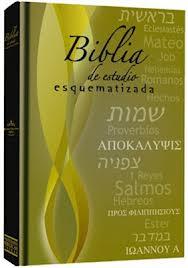 Biblia Esquematizada Estudio