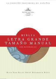 Biblia Letra Grande Manual  Celeste/Café