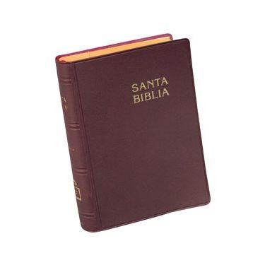 Biblia RVR042C L/G VINO