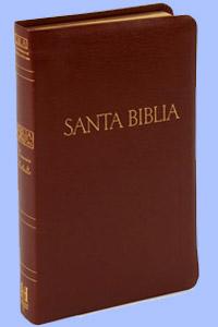 Biblia Ultrafina de las Americas Caja Color Café Bolsillo