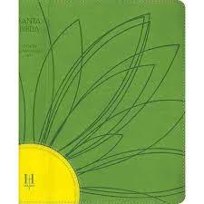 Biblia Letra Grande con Referencias - Tamaño manual - Verde, amarillo.