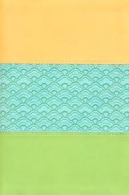 Biblia Arco Iris - Lluvia de luz - Verde claro y Durazno.