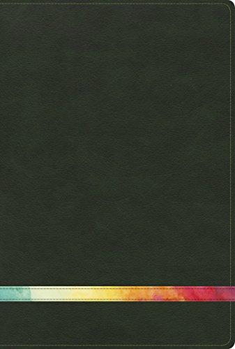 RVR 1960 Biblia de estudio Arco Iris verde