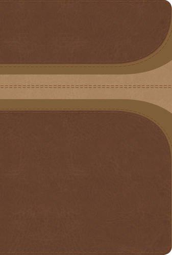 RVR 1960 Biblia de estudio Arco Iris canela
