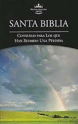 Biblia RVR 1960 Edición Pérdidas