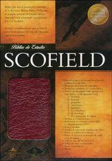 Biblia de estudio Scofield Cuero vino caja>
