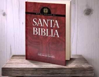 Biblia de Estudio Reina Valera Letra Grande